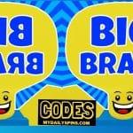Códigos de Big Brain Simulator Octubre de 2021 (NUEVO)